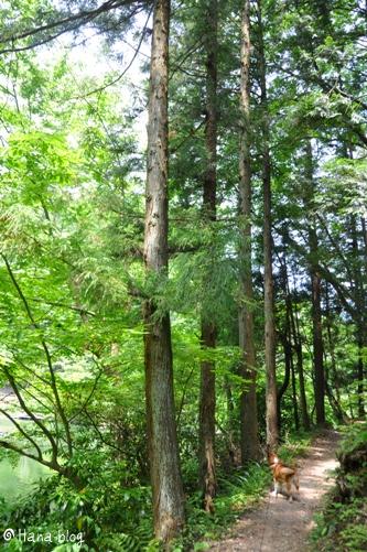 鎌北湖 092