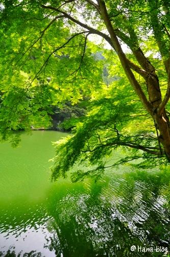 鎌北湖 067