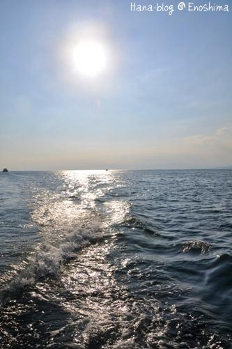 江ノ島 419