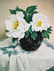 白牡丹 6F 1995
