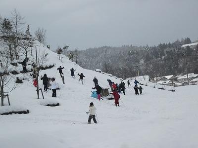 Walking ski 1
