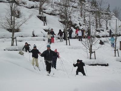 Walking ski 2