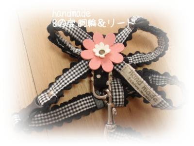 bag+koushitu+01_convert_20110517174054.jpg