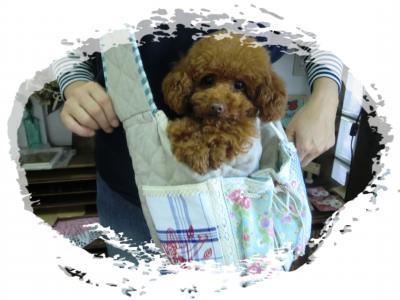 kyarry+bag+07_convert_20110516174744.jpg