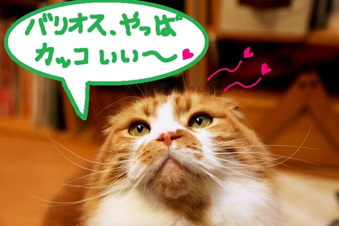 (1)_20120119050900.jpg