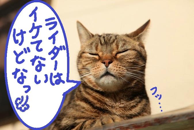(7)_20120119051057.jpg