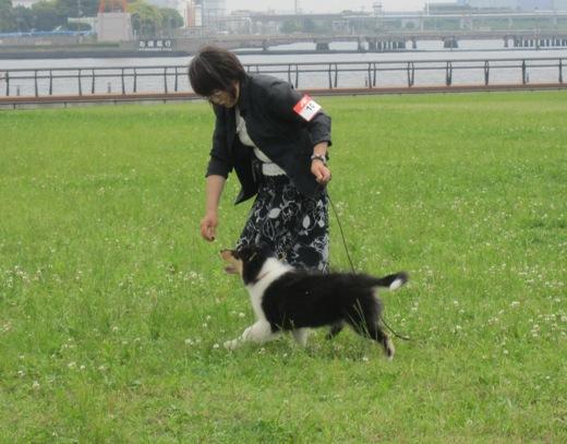 IMG_4471 (2)