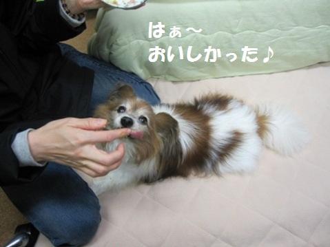 _Gotenchan1.jpg