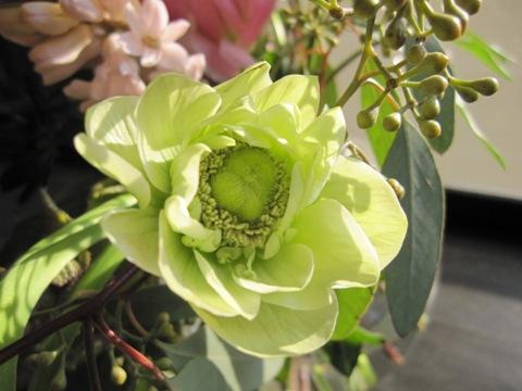_flower11.jpg