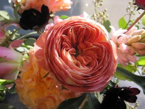 _flower12.jpg