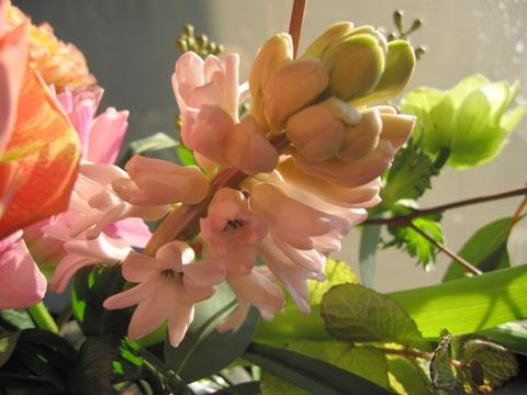 _flower7.jpg