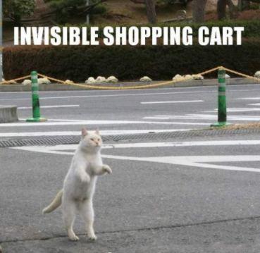 invisibleshoppingcart.jpg