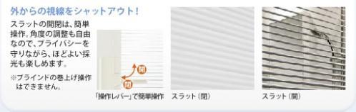 img_box02_02.jpg