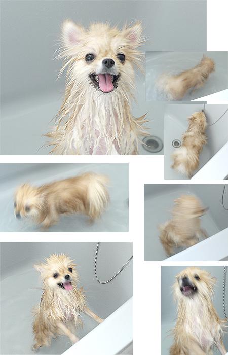 2009/9/25 自宅で急遽お風呂