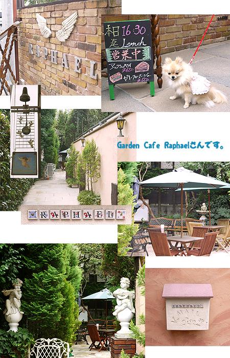 2009/10/10 Garden Cafe Raphael 1
