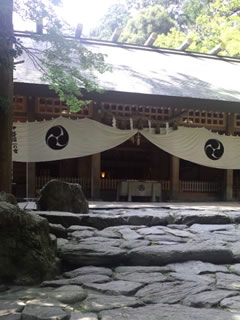 2011_07_13_tubaki.jpg