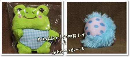 10-13-1_20101013011627.jpg
