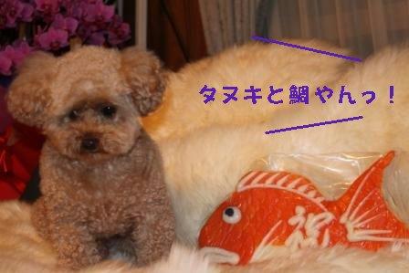 10-30-13_20091030195501.jpg