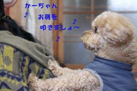 12-22-3_20091222011412.jpg