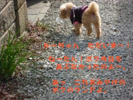 2-16-1_20100216031512.jpg