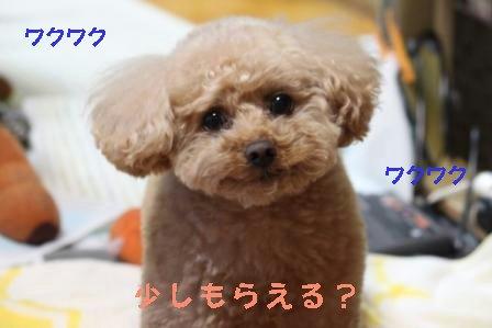 2-3-4_20100203015012.jpg