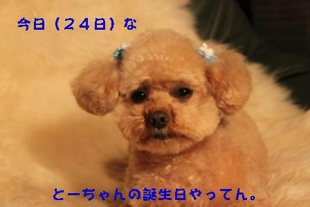 3-25-6_20100325031454.jpg
