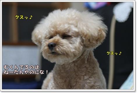 8-3-2_20100903024044.jpg