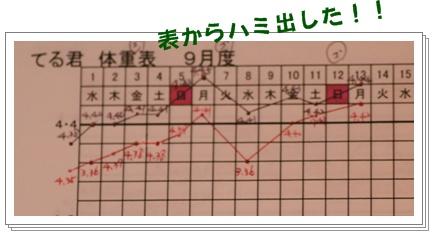 9-14-4.jpg