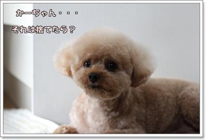 9-23-4_20100923023459.jpg