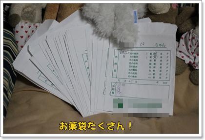 9-23-5_20100923023458.jpg