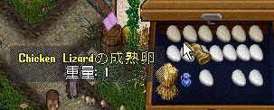 WS000641.JPG