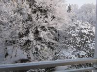 積雪の様子 北側