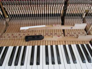 ピアノの倒立 初回 1-2