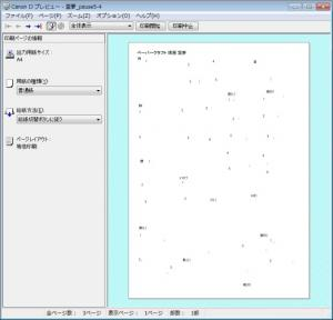 20100102_print01.jpg
