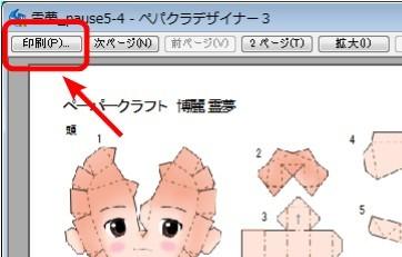 20100102_print02.jpg