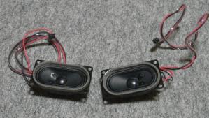 20100628_speaker02.jpg