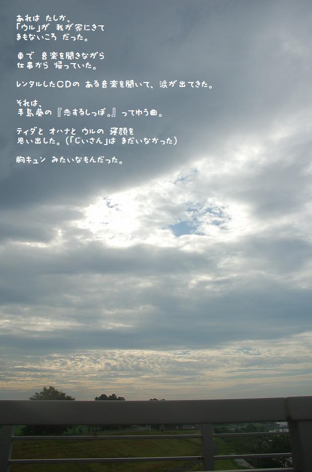 20110710-1.jpg