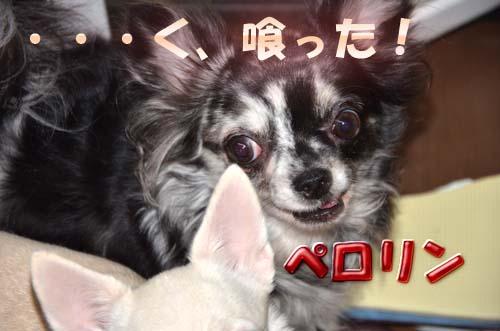 10_20111202134444.jpg