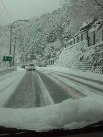 雪国やん。