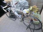 今日の自転車