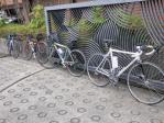 自転車乗りの朝