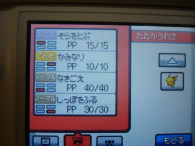 DSC02235_convert_20090923205626.jpg