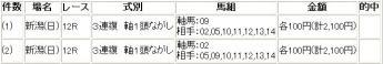 20100509新潟12R