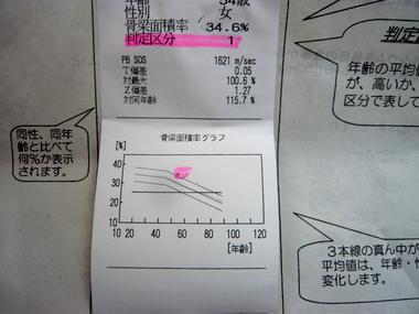 P1100952.jpg