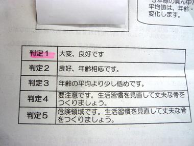 P1100953.jpg