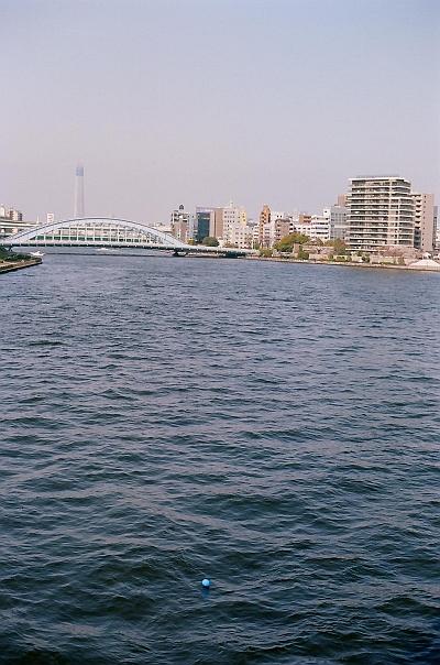 20100526-1.jpg