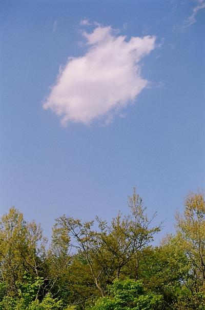 20100602.jpg