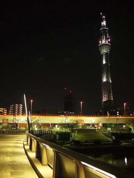 20110112.jpg