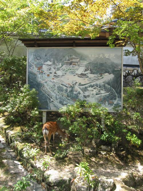 多喜山水精寺大聖院-6