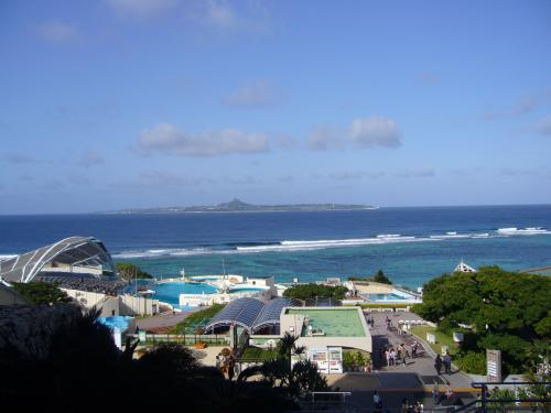沖縄美ら海水族館-2